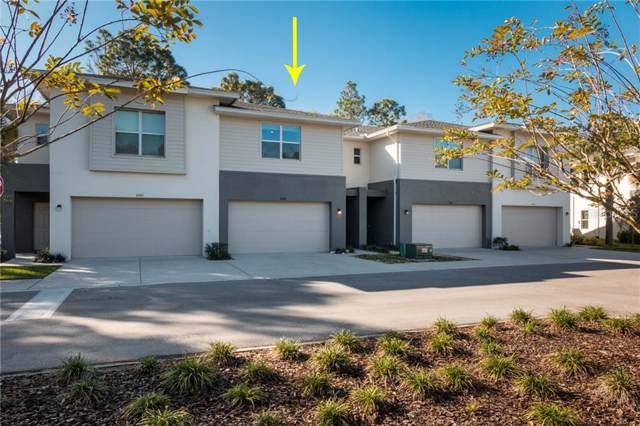 6406 Sanctuary Creek Lane, Tampa, FL 33625 (MLS #T3221518) :: Cartwright Realty