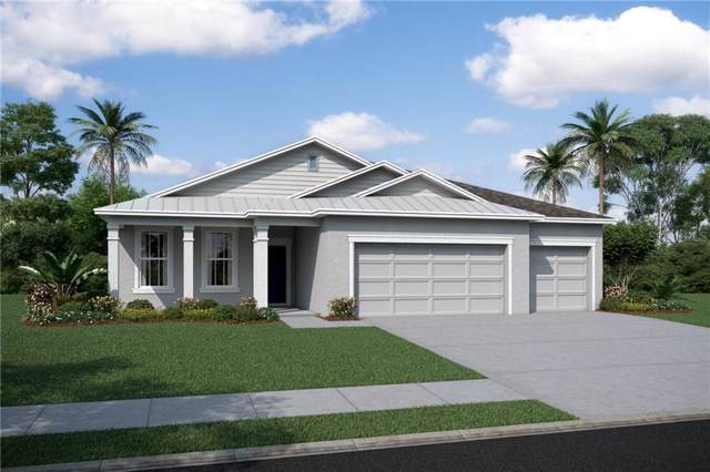 11616 Tetrafin Drive #1021, Riverview, FL 33579 (MLS #T3221519) :: Medway Realty