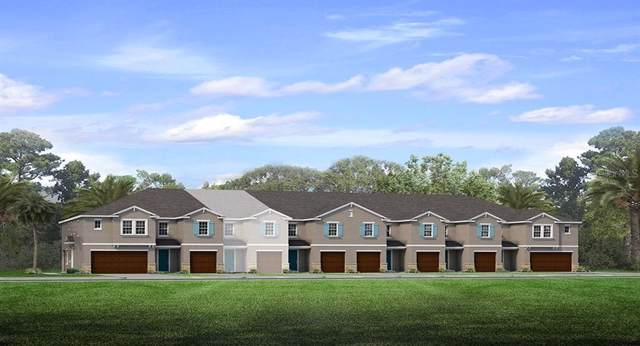 18723 Noble Caspian Drive, Lutz, FL 33558 (MLS #T3221520) :: Team Bohannon Keller Williams, Tampa Properties