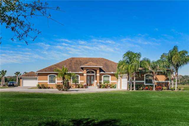 13020 Mcintosh Lakes Lane, Dover, FL 33527 (MLS #T3221522) :: Lockhart & Walseth Team, Realtors