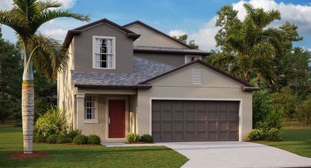 5208 Olano Street, Palmetto, FL 34221 (MLS #T3221529) :: Team Bohannon Keller Williams, Tampa Properties
