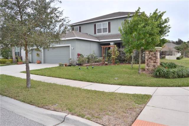 11322 Scribner Station Lane, Lithia, FL 33547 (MLS #T3221551) :: Kendrick Realty Inc