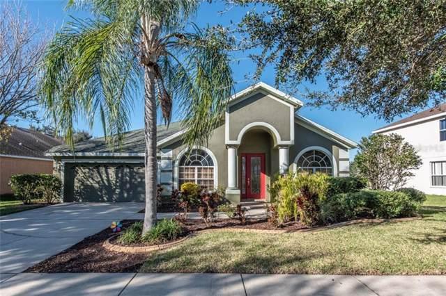 9027 Pinebreeze Drive, Riverview, FL 33578 (MLS #T3221559) :: BuySellLiveFlorida.com