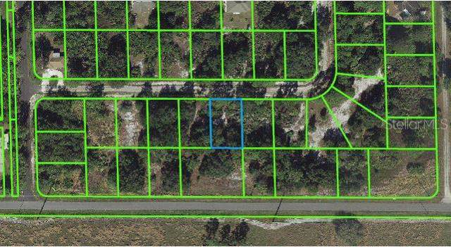 108 Edenwald Avenue, Lake Placid, FL 33852 (MLS #T3221622) :: 54 Realty