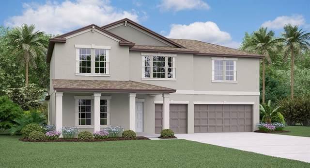 5311 Olano Street, Palmetto, FL 34221 (MLS #T3221634) :: Godwin Realty Group