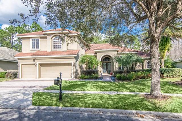 17207 Broadoak Drive, Tampa, FL 33647 (MLS #T3221638) :: GO Realty