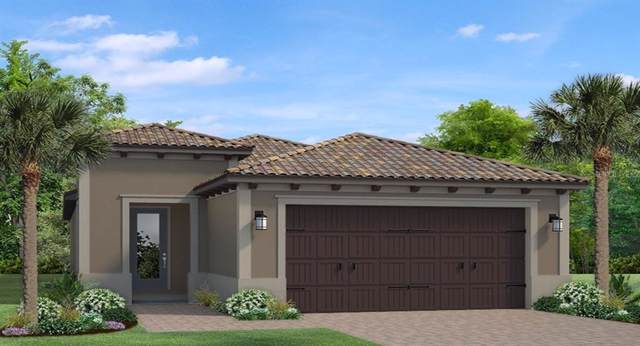 4878 Tramanto Lane, Wesley Chapel, FL 33543 (MLS #T3221654) :: Team Bohannon Keller Williams, Tampa Properties