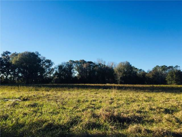 0 112TH AVE, Webster, FL 33597 (MLS #T3221670) :: Icon Premium Realty