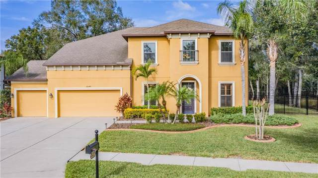 22345 Oakville Drive, Land O Lakes, FL 34639 (MLS #T3221702) :: 54 Realty