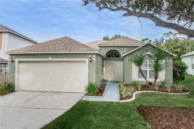 807 Rocky Mountain Court, Valrico, FL 33594 (MLS #T3221747) :: Griffin Group