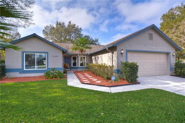 11604 Wellman Drive, Riverview, FL 33578 (MLS #T3221781) :: Griffin Group