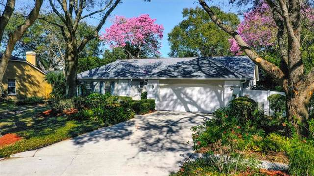 1408 Midoneck Court, Valrico, FL 33596 (MLS #T3221800) :: Kendrick Realty Inc