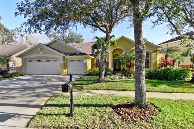 9107 Woodbay Drive, Tampa, FL 33626 (MLS #T3221809) :: Team Bohannon Keller Williams, Tampa Properties