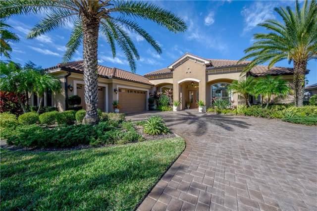1031 Stella Vara Drive, Lutz, FL 33548 (MLS #T3221867) :: Keller Williams on the Water/Sarasota