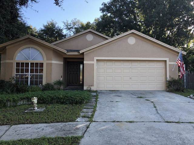24139 Twin Court, Land O Lakes, FL 34639 (MLS #T3221888) :: Team Bohannon Keller Williams, Tampa Properties