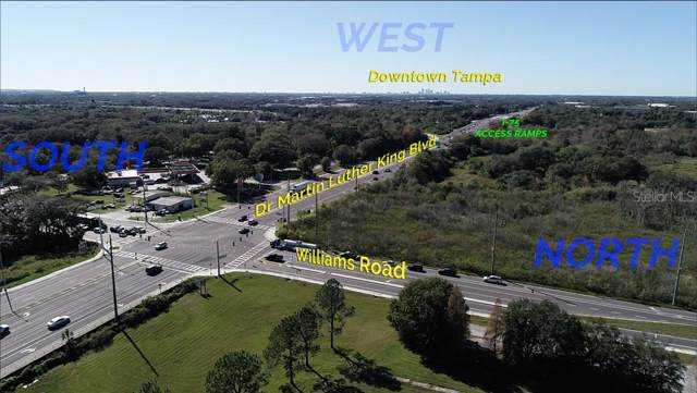 4041 Williams Road, Tampa, FL 33610 (MLS #T3221944) :: Homepride Realty Services