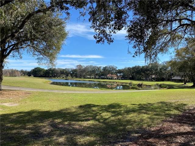 16503 Avila Boulevard, Tampa, FL 33613 (MLS #T3221977) :: Team Borham at Keller Williams Realty