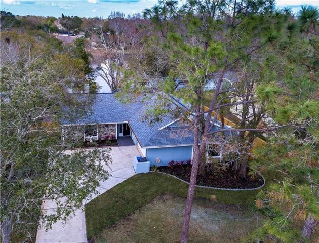 15110 Southfork Drive, Tampa, FL 33624 (MLS #T3221985) :: Griffin Group
