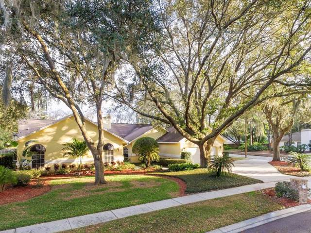 18240 Clear Lake Drive, Lutz, FL 33548 (MLS #T3221990) :: Premier Home Experts