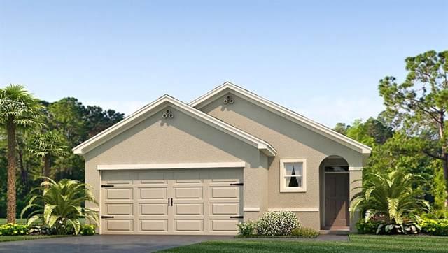 16727 Trite Bend Street, Wimauma, FL 33598 (MLS #T3221999) :: Team Bohannon Keller Williams, Tampa Properties