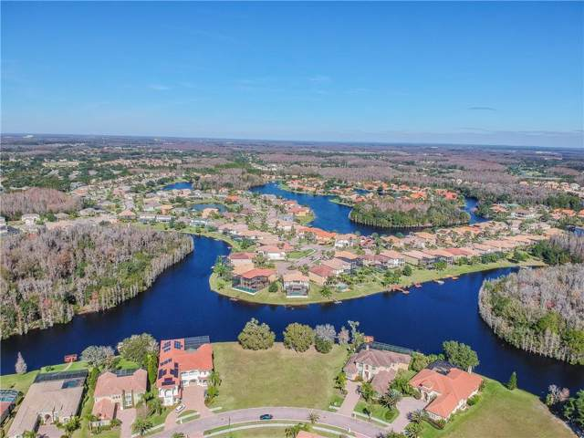 10541 Bermuda Isle Drive, Tampa, FL 33647 (MLS #T3222060) :: The Light Team
