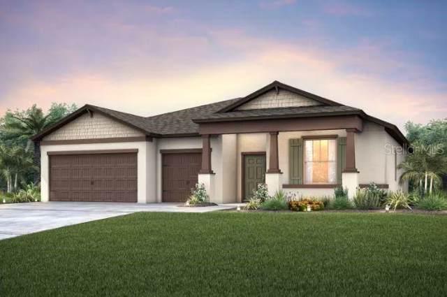 18478 Cortes Creek Blvd, Spring Hill, FL 34610 (MLS #T3222121) :: Team Bohannon Keller Williams, Tampa Properties