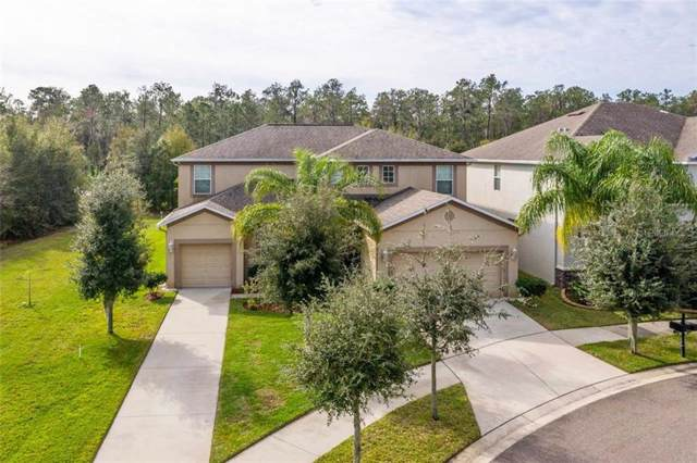12133 Streambed Drive, Riverview, FL 33579 (MLS #T3222149) :: Gate Arty & the Group - Keller Williams Realty Smart