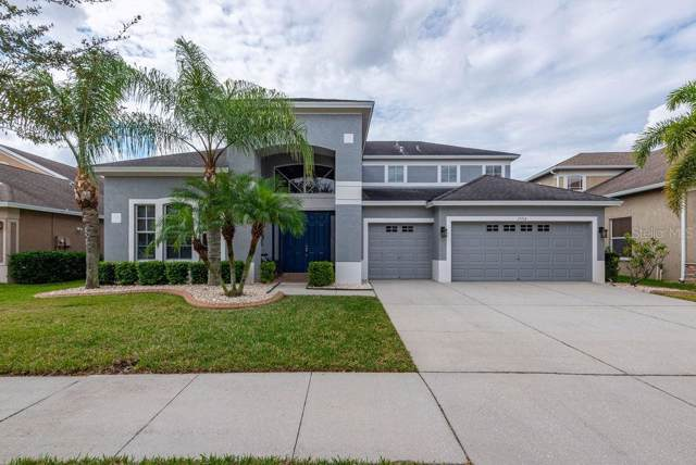 13714 Artesa Bell Drive, Riverview, FL 33579 (MLS #T3222186) :: Team Pepka
