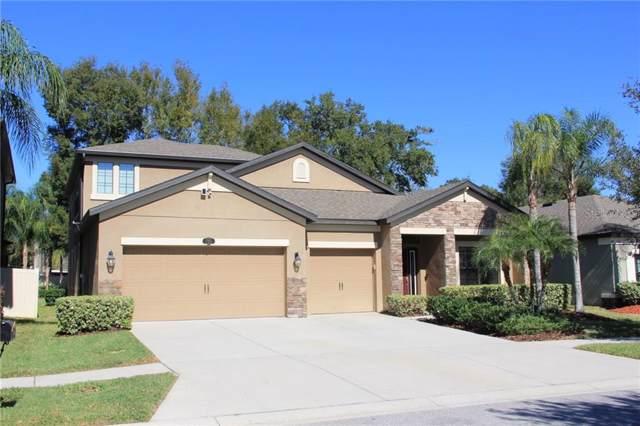205 Dakota Hill Drive, Seffner, FL 33584 (MLS #T3222236) :: Keller Williams on the Water/Sarasota