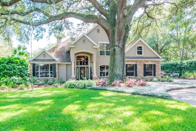 18701 Livingston Avenue, Lutz, FL 33559 (MLS #T3222241) :: 54 Realty