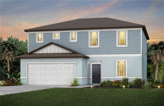 1002 Coastal Hammock Ave., Ruskin, FL 33570 (MLS #T3222249) :: Team Pepka