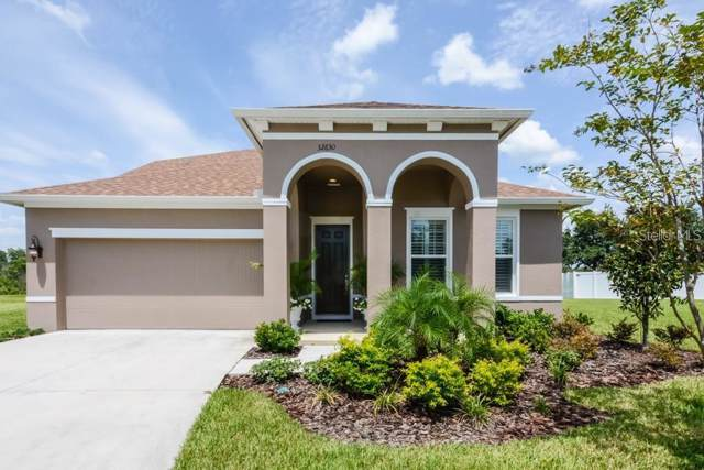 32630 Rapids Loop, Wesley Chapel, FL 33545 (MLS #T3222261) :: Prestige Home Realty
