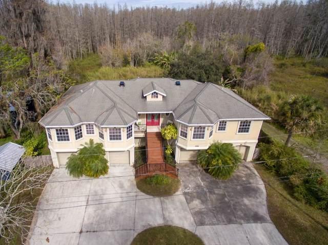 18720 Lake Commiston Drive, Lutz, FL 33549 (MLS #T3222279) :: 54 Realty