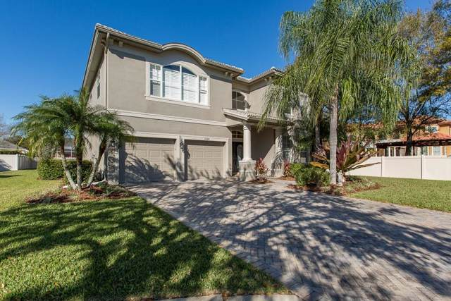12908 Darby Ridge Drive, Tampa, FL 33624 (MLS #T3222316) :: Pristine Properties