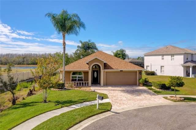 1001 Torreya Way, Odessa, FL 33556 (MLS #T3222389) :: Cartwright Realty