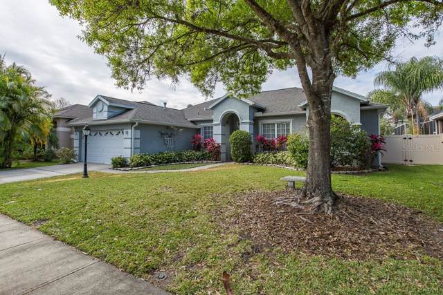 12418 Seabrook Drive, Tampa, FL 33626 (MLS #T3222418) :: The Duncan Duo Team