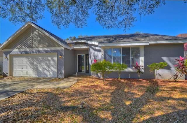 2117 Darlington Oak Drive, Seffner, FL 33584 (MLS #T3222433) :: Burwell Real Estate