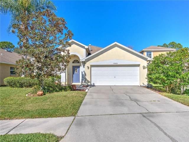 12523 Blazing Star Drive, Tampa, FL 33626 (MLS #T3222440) :: Burwell Real Estate