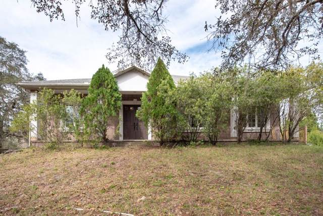 14326 King Richards Trail, Hudson, FL 34669 (MLS #T3222455) :: Cartwright Realty