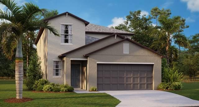 5126 Olano Street, Palmetto, FL 34221 (MLS #T3222495) :: Godwin Realty Group