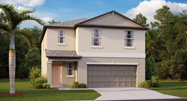 11425 Sage Canyon Drive, Riverview, FL 33578 (MLS #T3222496) :: Griffin Group