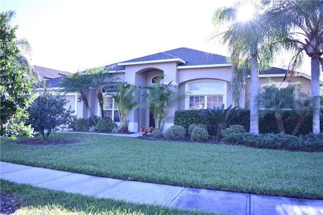26531 Shoregrass Drive, Wesley Chapel, FL 33544 (MLS #T3222649) :: 54 Realty