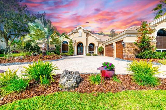 11827 Shire Wycliffe Court, Tampa, FL 33626 (MLS #T3222688) :: Griffin Group