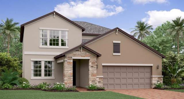 11463 Chilly Water Court, Riverview, FL 33579 (MLS #T3222762) :: Griffin Group