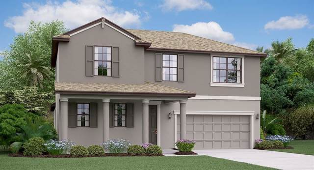 11457 Freshwater Ridge Court, Riverview, FL 33579 (MLS #T3222774) :: The A Team of Charles Rutenberg Realty