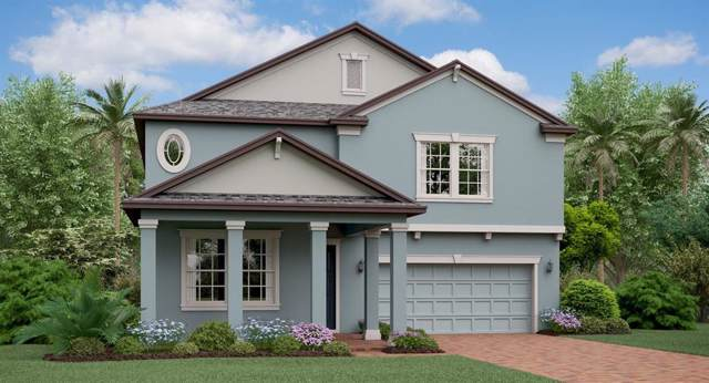 11459 Freshwater Ridge Drive, Riverview, FL 33579 (MLS #T3222800) :: The A Team of Charles Rutenberg Realty