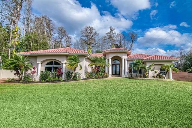 17209 Orangewood Drive, Lutz, FL 33548 (MLS #T3222834) :: Burwell Real Estate