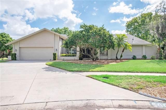 5002 Chattam Lane, Tampa, FL 33624 (MLS #T3222969) :: Pristine Properties
