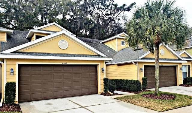 8539 Sandpiper Ridge Avenue, Tampa, FL 33647 (MLS #T3223488) :: Lockhart & Walseth Team, Realtors