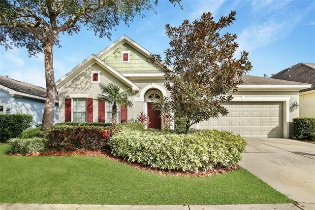 15814 Starling Water Drive, Lithia, FL 33547 (MLS #T3223565) :: The Duncan Duo Team